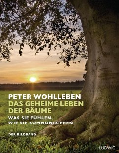 Das geheime Leben der Bäume - Wohlleben, Peter