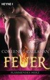 Flammendes Herz / Feuer Bd.6