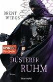 Düsterer Ruhm / Licht Saga Bd.5