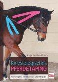 Kinesiologisches Pferdetaping
