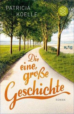 Die eine, große Geschichte (eBook, ePUB) - Koelle, Patricia