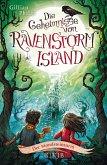 Der Mondsteinturm / Die Geheimnisse von Ravenstorm Island Bd.3 (eBook, ePUB)