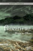 Frozen Fire / Wächter der Illusion Bd.2
