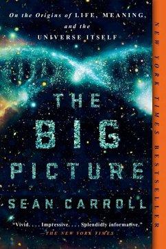 The Big Picture (eBook, ePUB) - Carroll, Sean