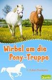 Wirbel um die Pony-Truppe (eBook, ePUB)
