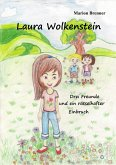Laura Wolkenstein (eBook, ePUB)