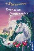 Freunde im Zauberreich / Sternenschweif Bd.6