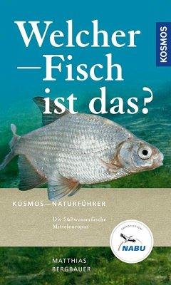 Welcher Fisch ist das? - Bergbauer, Matthias