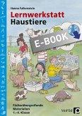 Lernwerkstatt Haustiere (eBook, PDF)