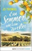 Ein Sommer wie kein zweiter (eBook, ePUB)