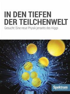 In den Tiefen der Teilchenwelt (eBook, ePUB)