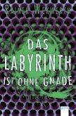 Das Labyrinth ist ohne Gnade / Labyrinth Bd.3