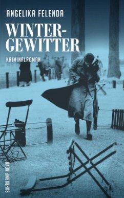 Wintergewitter / Kommissär Reitmeyer Bd.2 - Felenda, Angelika