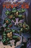 Teenage Mutant Ninja Turtles 10 - Shredder greift an
