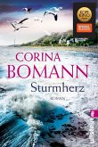 Sturmherz (eBook, ePUB)