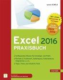 Excel 2016 Praxisbuch (eBook, ePUB)