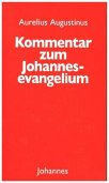 Kommentar zum Johannes Evangelium