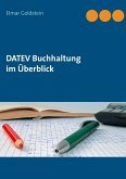 DATEV Buchhaltung im Überblick (eBook, ePUB)