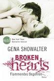 Flammendes Begehren / Broken Hearts Bd.3 (eBook, ePUB)