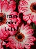 Freund oder Feind (eBook, ePUB)