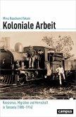 Koloniale Arbeit (eBook, PDF)