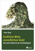 Endliche Welt, unendliches Geld (eBook, PDF)