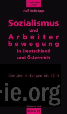 Sozialismus und Arbeiterbewegung in Deutschland und Österreich - Hoffrogge, Ralf