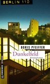 Dunkelfeld (eBook, PDF)