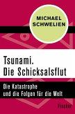 Tsunami. Die Schicksalsflut (eBook, ePUB)