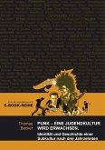 Punk - Eine Jugendkultur wird erwachsen (eBook, ePUB)