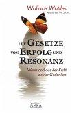 Die Gesetze von Erfolg und Resonanz (eBook, ePUB)