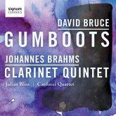 Gumboots/Klarinettenquintett Op.115