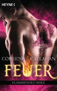 Flammendes Herz / Feuer Bd.6 (eBook, ePUB)
