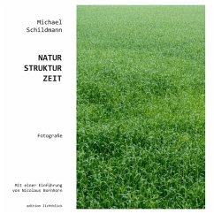 Natur-Struktur-Zeit (eBook, ePUB)