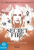 Die Entflammten / Secret Fire Bd.1 (eBook, ePUB)