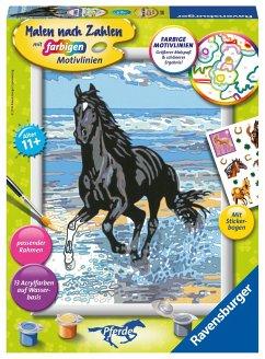 Ravensburger 28565 - Malen nach Zahlen, Pferd am Strand,