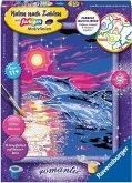 Ravensburger 28558 - Malen nach Zahlen, Delfine im Sonnenuntergang