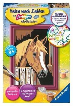 Ravensburger 29685 - Malen nach Zahlen, Pferd i...