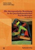 Die therapeutische Beziehung in der psychodynamischen Psychotherapie