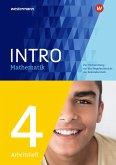INTRO Mathematik SI. Arbeitsheft 4