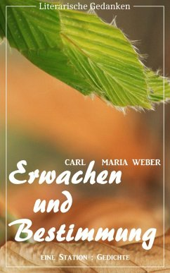 Erwachen und Bestimmung (Carl Maria Weber) (Literarische Gedanken Edition) (eBook, ePUB) - Weber, Carl Maria