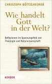 Wie handelt Gott in der Welt? (eBook, PDF)