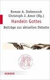 Handeln Gottes (eBook, PDF)