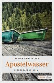 Apostelwasser (eBook, ePUB)