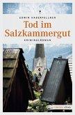 Tod im Salzkammergut (eBook, ePUB)
