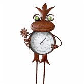 Thermometer Frosch Rost