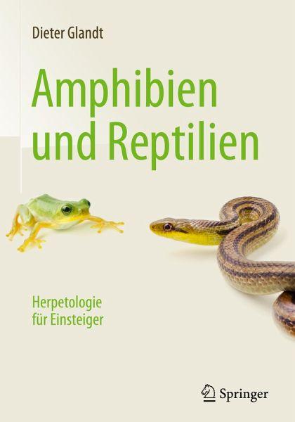 Amphibien und Reptilien - Glandt, Dieter