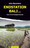 Endstation Bali (eBook, ePUB)