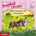 Mein Sommer mit Traumpony / Ponyhof Liliengrün Bd.1-3