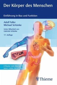 Der Körper des Menschen - Faller, Adolf; Schünke, Michael